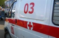 В Бурятии ротвейлер загрыз пятилетнюю девочку