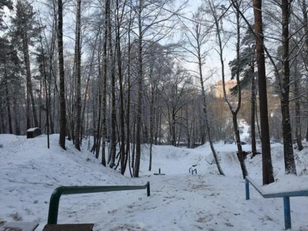 Отчего скончалась пропавшая ксередине зимы москвичка— Наталья Меламед