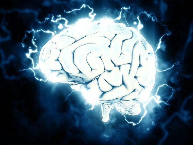 Ученые выяснили, как «включать» и «выключать» память