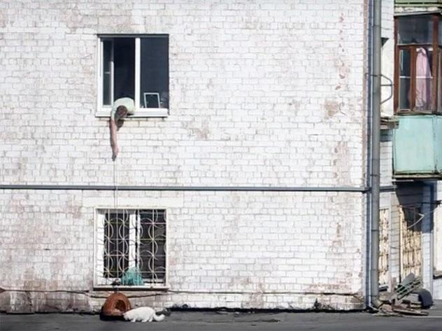 Мужчина поймал «наудочку» выпавшего изокна кота