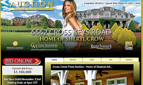 На интернет-аукционе Шерил КРОУ рассчитывает получить не меньше $1,1 миллиона