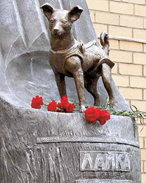 Памятник первому живому существу в космосе - собаке Лайке установлен в Москве на территории Института военной медицины