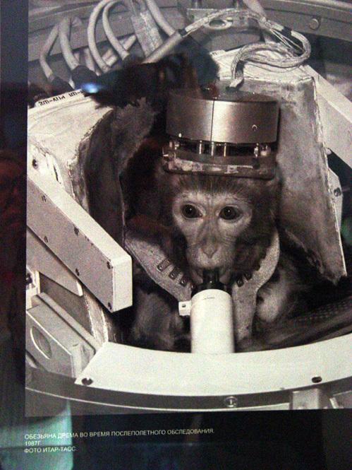 Советская космонавтка Дрема на послеполетном обследовании (1987г.)
