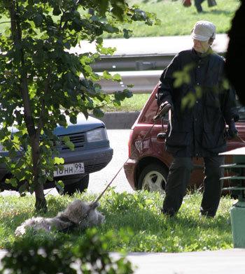 Даже жарким летом ХАРИТОНОВА гуляла с собаками в теплой куртке и кепке