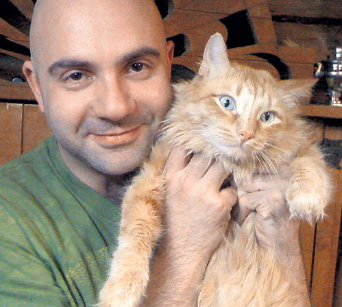 Дикие коты с баженовым