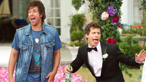 «Позорную» премию Голливуда «Золотая малина» получили ... адам сэндлер комедии