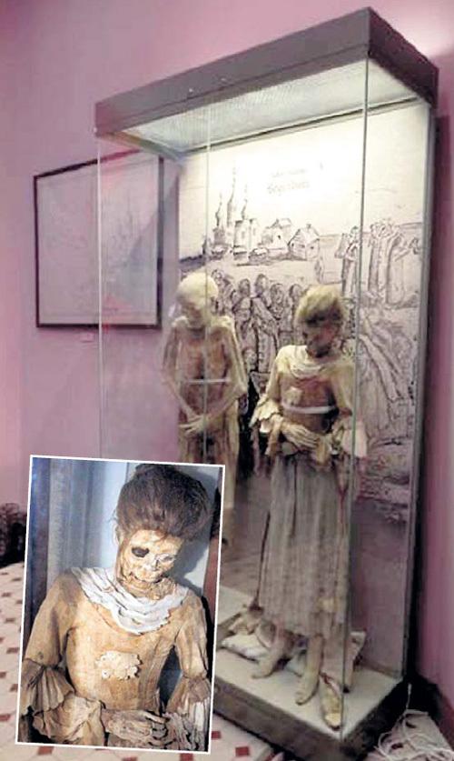 Пара из Мартышкино проявила благородство. Фото с сайта nlo-mir.ru