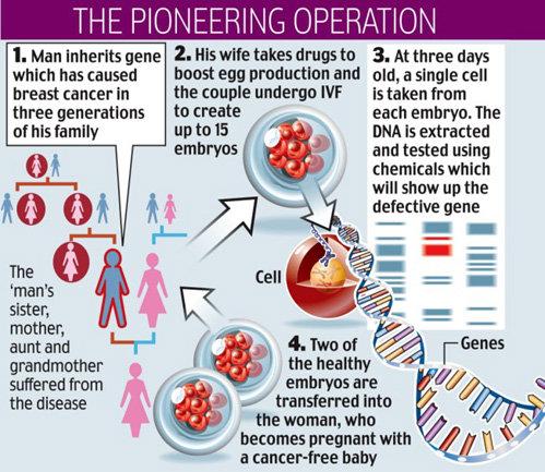 1. Мужчина является носителем гена, вызвавшего рак молочной железы у трех поколений женщин в его семье