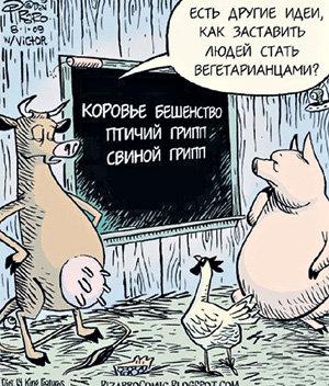 Фото MirTesen.ru