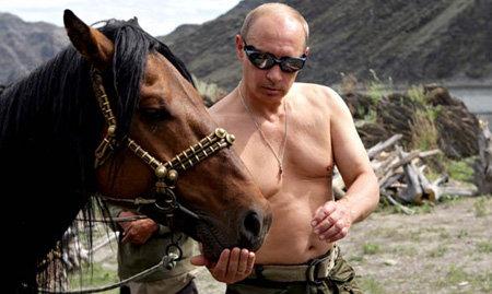 Увидев в интернете снимки Владимира Путина с разными животными, Памела поверила, что россйиский премьер её поймет. Фото inoforum.ru