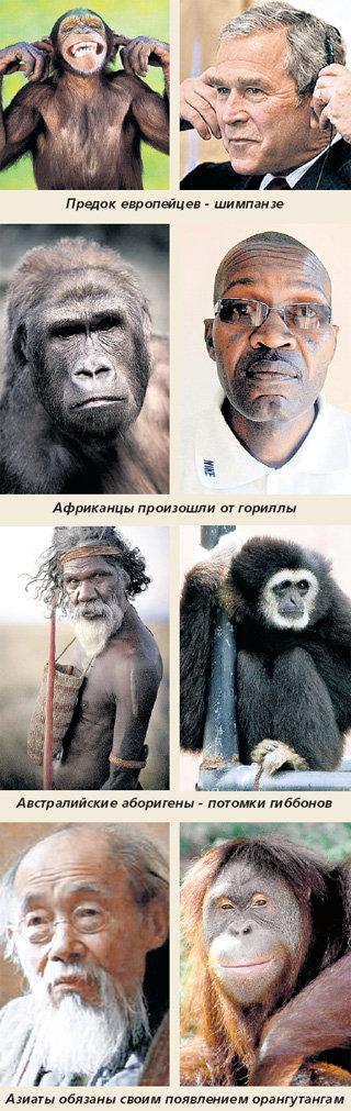 negri-sparivayutsya-foto