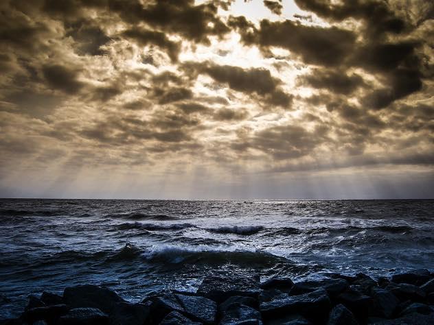 Чистоте Финского залива угрожают моющие средства ишампуни— Экологи