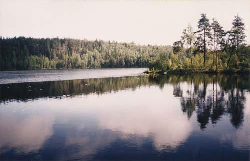 Озеро в Карелии. Источник: wikimedia.org