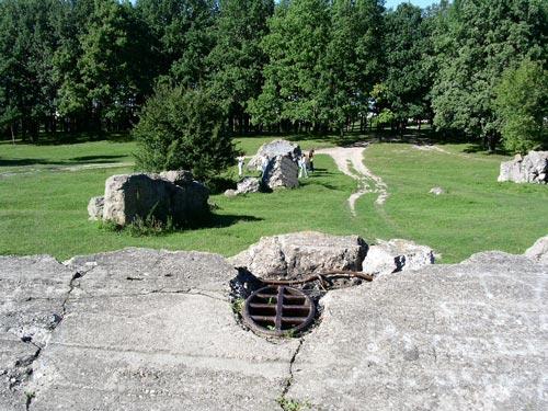 Руины бункера «Вервольф» сегодня. Фото: wikimedia.org